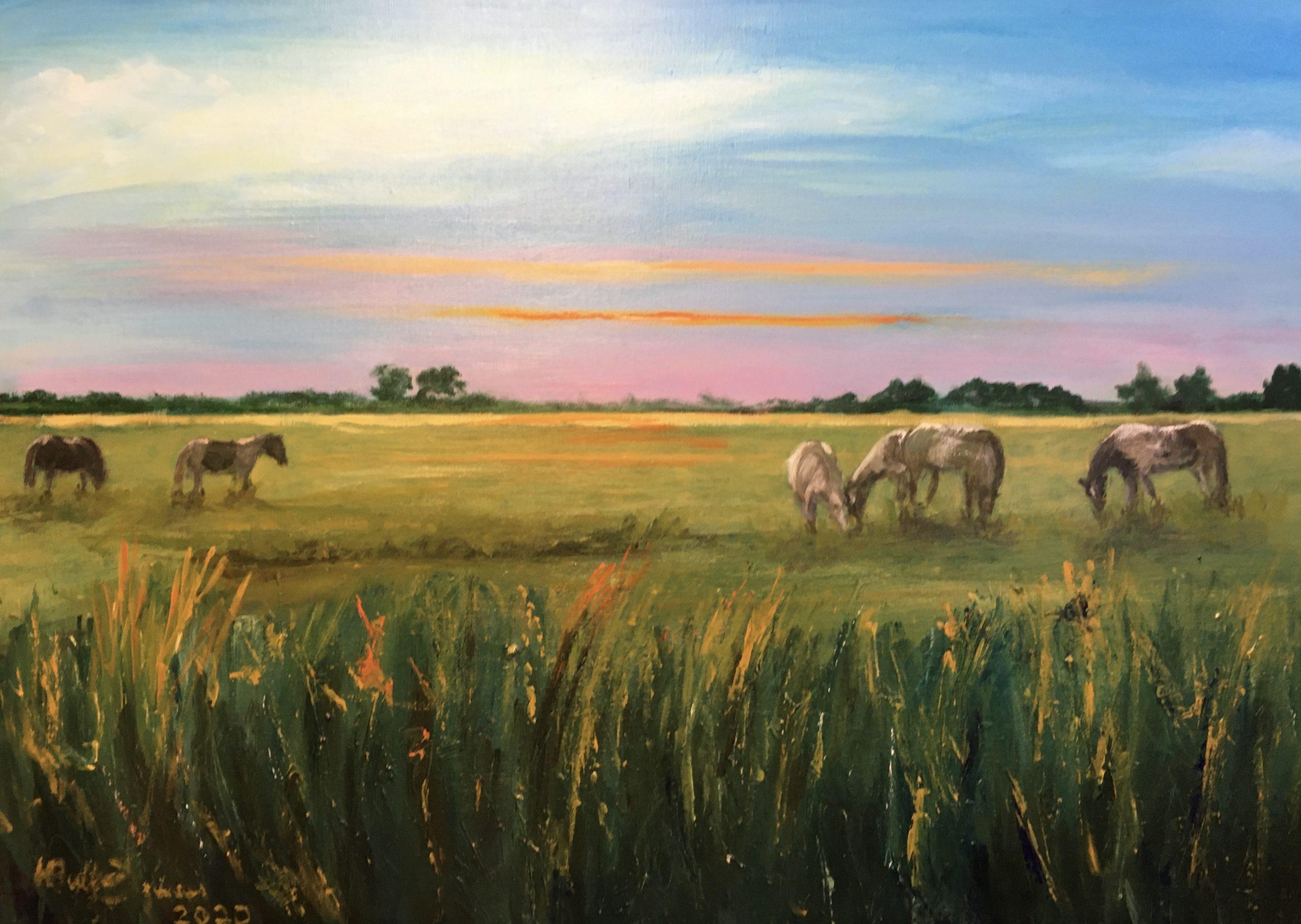 Paarden lopen achter Sandebuur